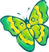 fjärilgulgrön