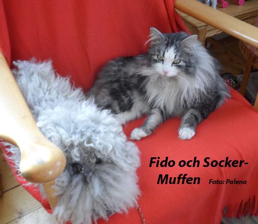 Fido o Socker-Muffen